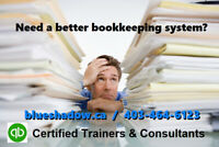 QuickBooks / Bookkeeping Training & Consulting