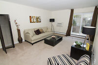 Renovated bach, 1 and 2 BDRM apartments in Sarnia!