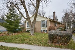 Solid brick bungalow in sought after Georgetown Oakville / Halton Region Toronto (GTA) image 1