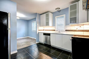 Reduced! Beautiful, affordable, renovated home in Windsor! Windsor Region Ontario image 5