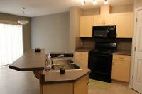 Terwillegar duplex W garage for rent(SW Edmonton)Available now