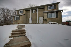 4 Month Lease(Jan-April), Room for Rent in Four Bedroom House Kitchener / Waterloo Kitchener Area image 1