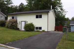 Just renovated single house, 1st month half rent