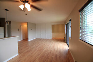Newly Renovated - 2 Bedrooms, 1 Bathroom Condo in Armstrong, BC