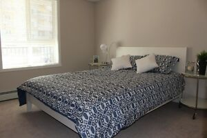 NEW 1 BR & 1BR with DEN Now Available!