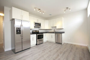 New 2 Bedroom Basement Suite Available Immediately in East End