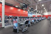 World Gym Personal Training Sessions