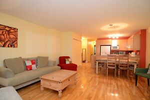 Spacious affordable condo to sell in the Plateau mont royal