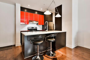 New Modern Beautiful 1 bedroom condo 3 1/2