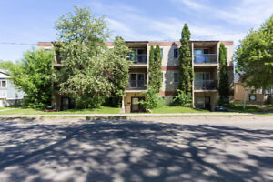 Completely Renovated Condo Near Whyte