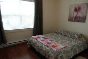 2+1 Bedroom Bungalow, George Mercer Dr. Bay Roberts St. John's Newfoundland image 10