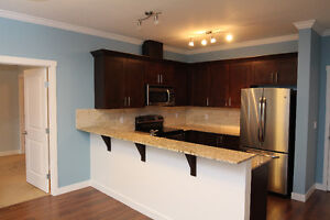 Open House - 2 Bed 2 Bath Condo in Sparwood
