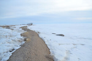 Waterfront Lots and Camp Sites for Sale on Last Mountain Lake Regina Regina Area image 4