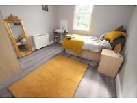 Newly renovated 3 bedroom flat in Bow dss accepted with guarantor