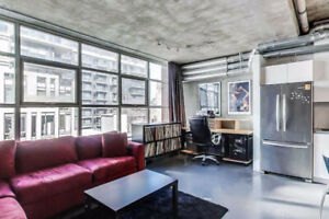 Fantastic Opportunity To Rent This Soft Loft Condo Located In Th