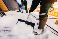 Snow Shoveling Services in Scottsdale RD Area.