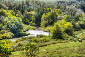 New Building Lots Available- Drayton Ridge Subdivision Kitchener / Waterloo Kitchener Area image 5