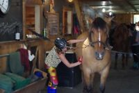 Horseback Riding Summer Camps