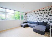 3 bedroom house in Murchison Road, Leyton, E10
