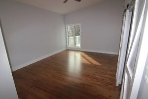 RENOVATED 2 Storey Walkout  in Pineview!
