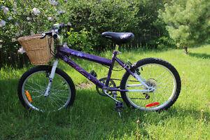 "Girls Bike; 19"" Tires"