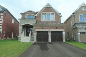 New 4br+4bath House for Lease in Sharon Village,East Gwillimbury