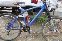 Banchee Down Hill Racing Mountain Bike