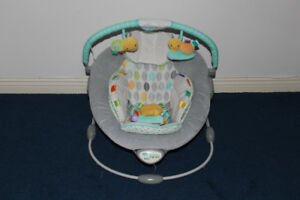 Taggies Soft n Snug Bouncer