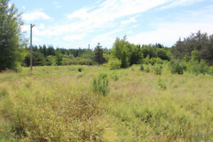 1.77 acre lot at 1009 Kay road, McKees Mills