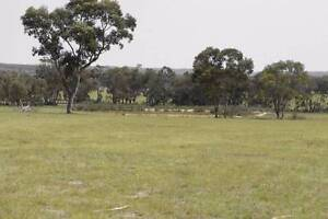 100 Acres, 6 Dams Sheds, Storage and weekend accommodation Capertee Lithgow Area Preview