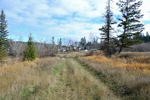 Great Building Lot on South Lakeside Williams Lake Cariboo Area image 9
