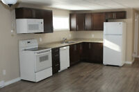 COMPLETELY RENOVATED 2BR LOWER LEVEL APT - AVAILABLE IMMEDIATELY