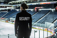 Static Security Guards