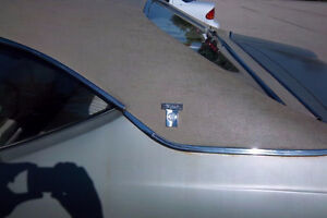Buick Skylark/GS Vinyl Top Trim + additional parts