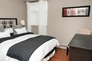 2 Bedroom Condo - River View - Downtown - Laundry in-suite