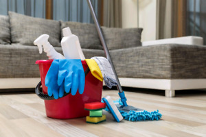 Cleaning service with best results 6479362737 great price