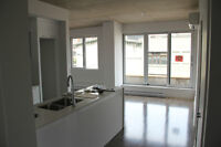 Brand new 3 1/2 Condo in Griffintown for Rent