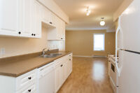Bright & Clean 2 bed Suite