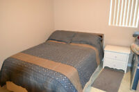 Room for rent next to CCNB Campbellton (male student preferred)