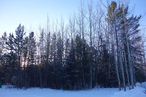 Rare Find! Whitehorse Lot for Sale!
