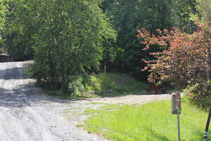 Campground for sale in the Kootenays Revelstoke British Columbia image 6