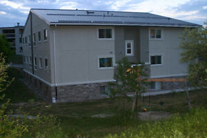 Multi Family apartment building for sale London Ontario image 2