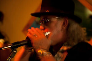 Harmonica player with vocals , frontman ,or side man avail Peterborough Peterborough Area image 3