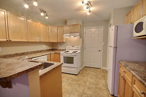 Beautiful 2 Bdrm Condo with New Flooring & Paint Edmonton Edmonton Area image 3