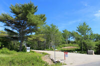 Land For Sale in Chester Basin! Come visit and make an offer!