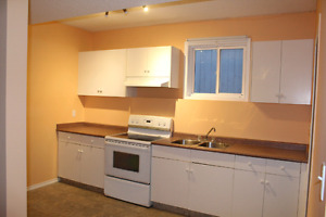 Basement suite for rent with separate entrance.