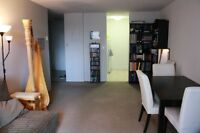 $1172 – 3 ½ – Plateau/McGill Ghetto – July 1