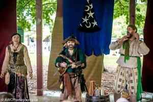 Want to join a Pirate Society and play Celtic music? Kitchener / Waterloo Kitchener Area image 6