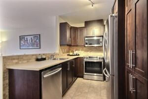Brossard Two Bedroom Lux Apt for rent $1200