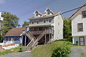 Income Duplex Property Close to the Mount and Amenities